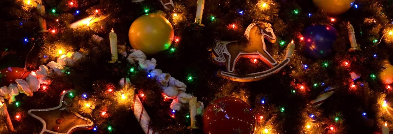 Режим работы в новогодние праздники, Северо-Восточный Стоматологический Центр №1